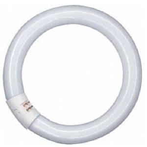 OSRAM Ring-Leuchtstoffröhre 22W von UNI-Elektro