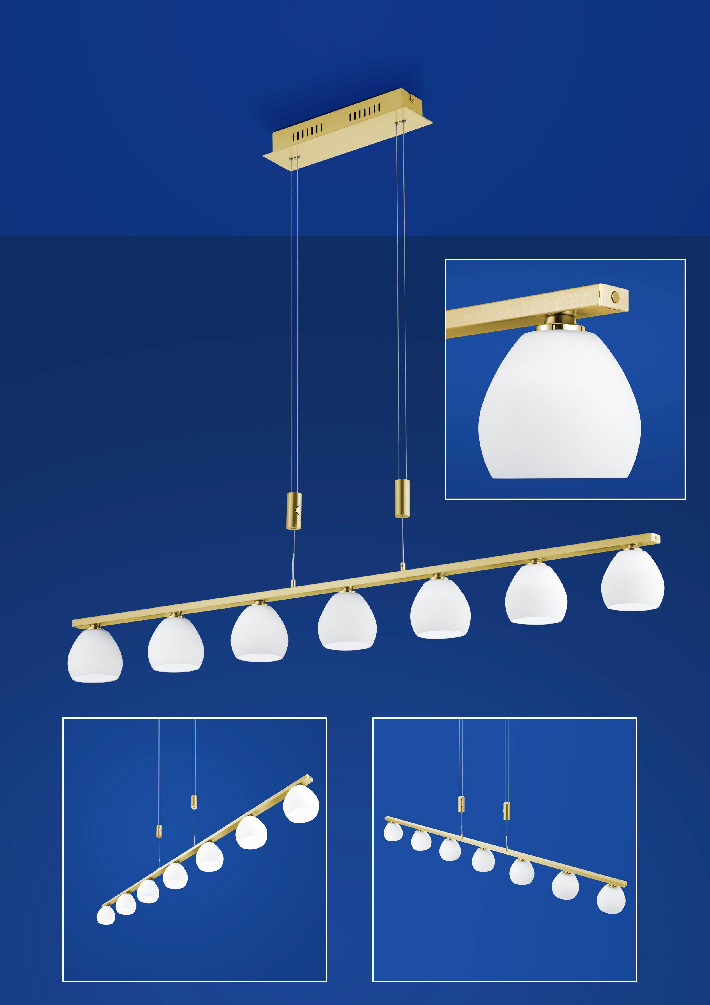 LED-Pendelleuchte CENTURION von B-Leuchten